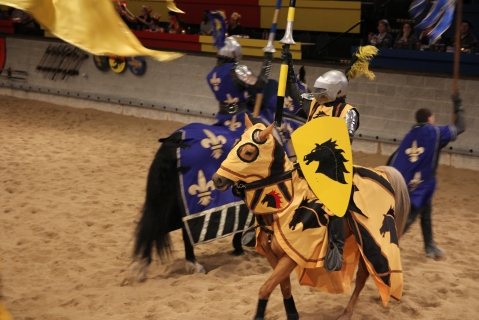 Go, Yellow Knight!